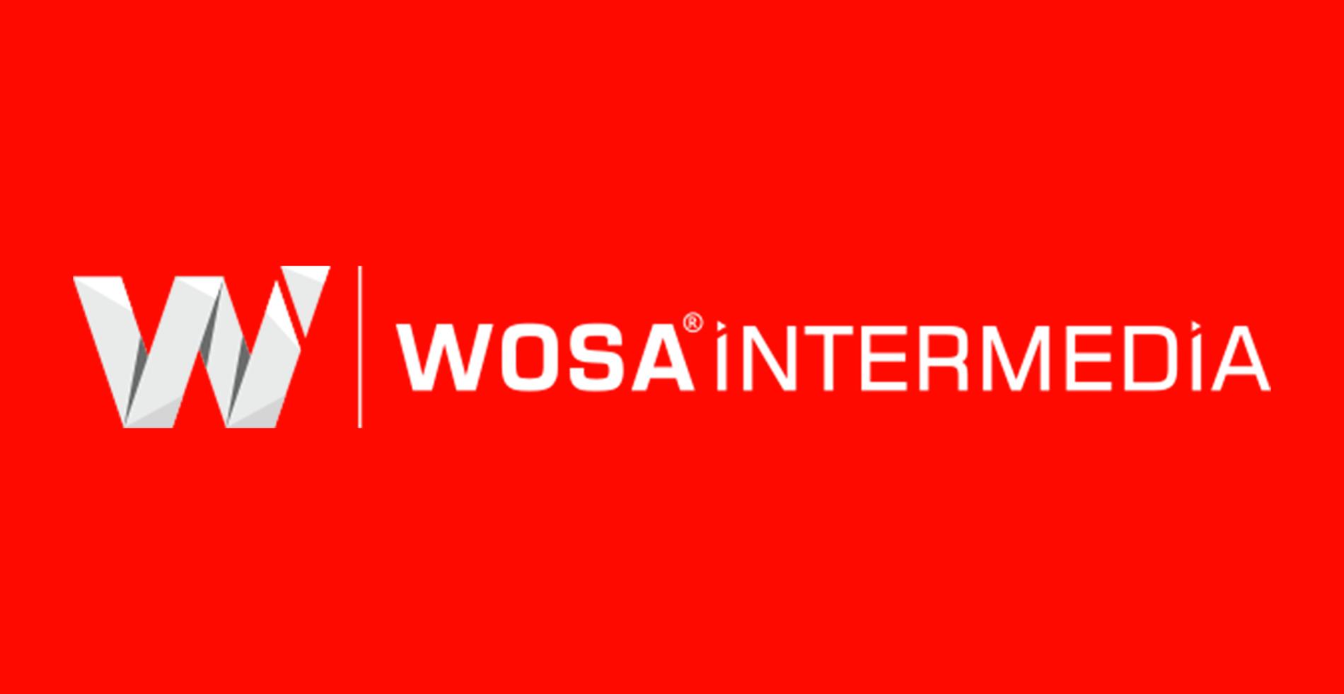 Wosa Intermedia Logo